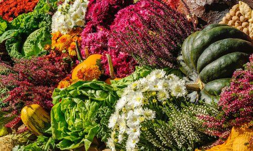 autumn farmers market