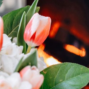 Valentine's Day indoor picnic tulips in front of a fire